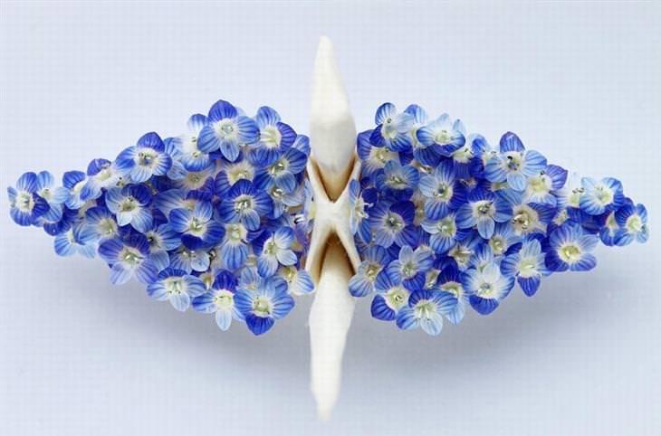 עגורנים מעוצבים מאוריגמי