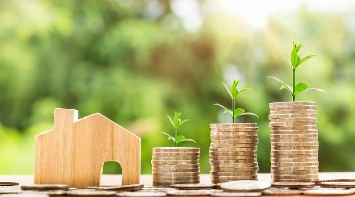 הבטחות לשנה הקרובה: מבנה קרטון של בית לצד מטבעות כסף מהם יוצא שתיל
