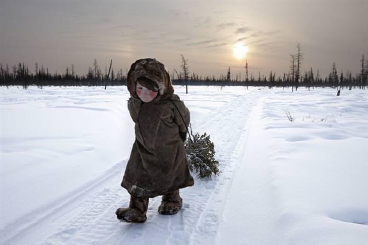 זוכי תחרות הצילום בסיינה: ילדה הולכת לבדה בשלג וסוחבת ענף