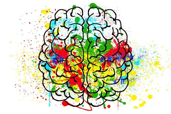 איור של מוח עם כתמי צבע עליו