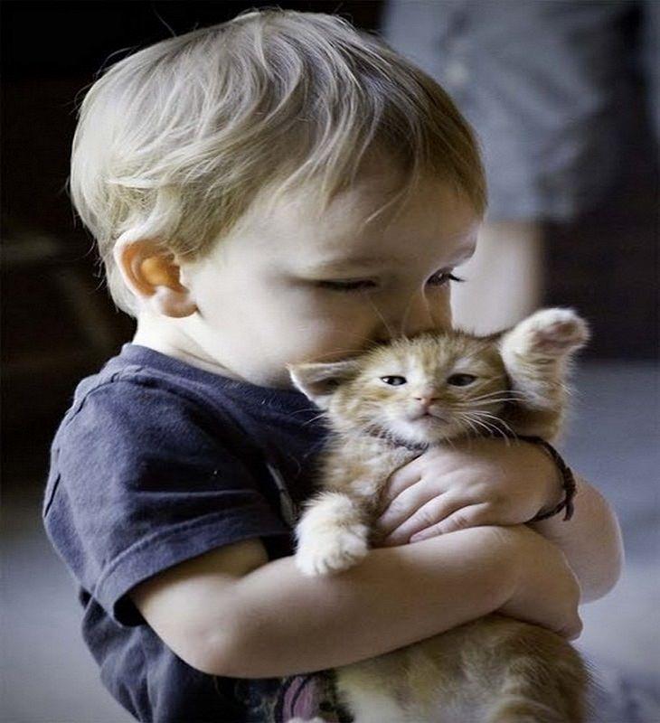 ילד מחבק ומנשק גור חתולים