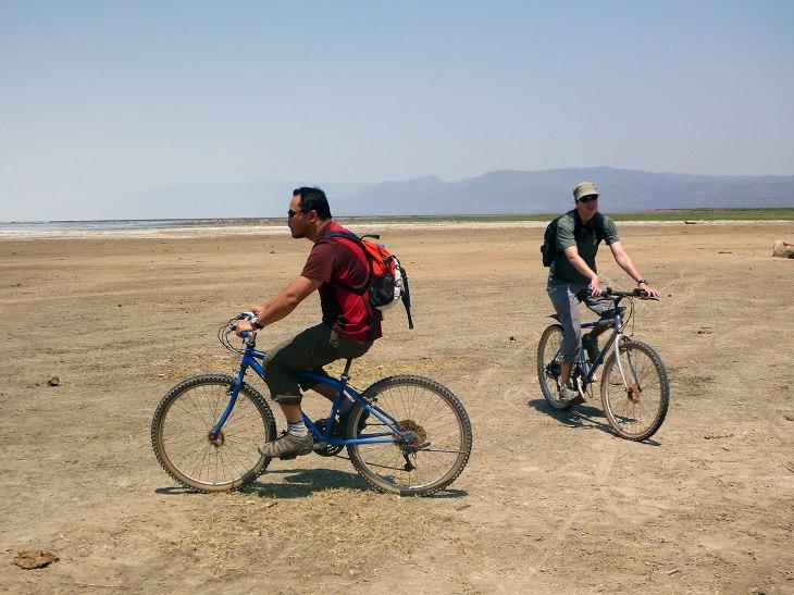 רוכבי אופניים סרנגטי