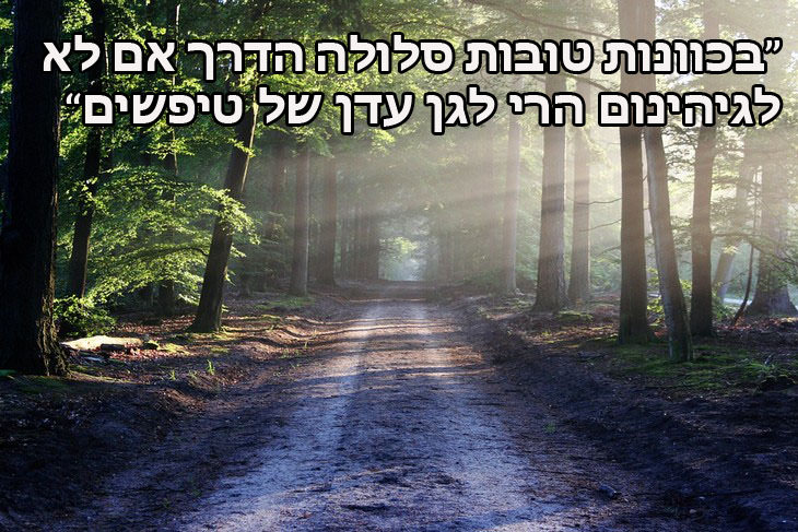 בכוונות טובות סלולה הדרך אם לא לגיהינום הרי לגן עדן של טיפשים