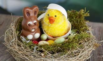 בובה של אפרוח וארנב משוקולד בתוך קן, וסביבם ביצים