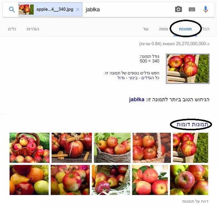 טיפים לשימוש בגוגל: הסבר על חיפוש תמונה בגוגל באמצעות תמונה אחרת
