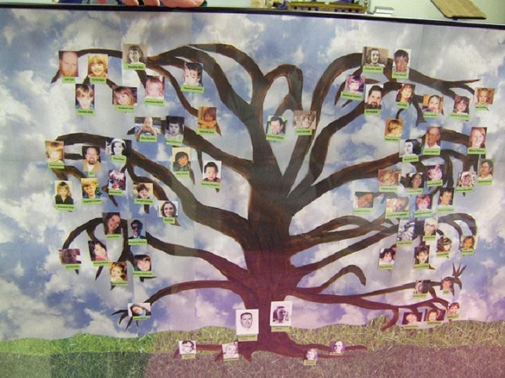 עץ משפחתי