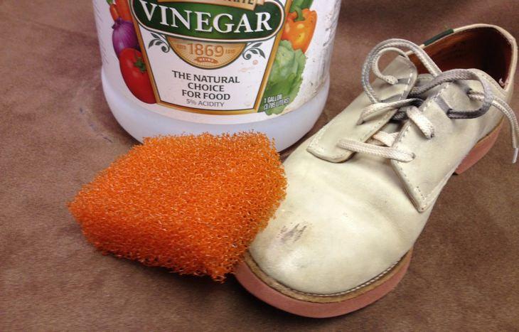 ספוג לשפשוף ליד נעל לבנה עם כתם, ומאחוריהם בקבוק של חומץ