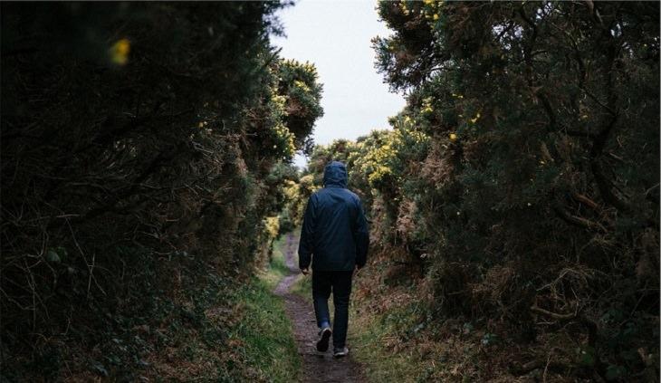 גבר הולך בשביל ביער