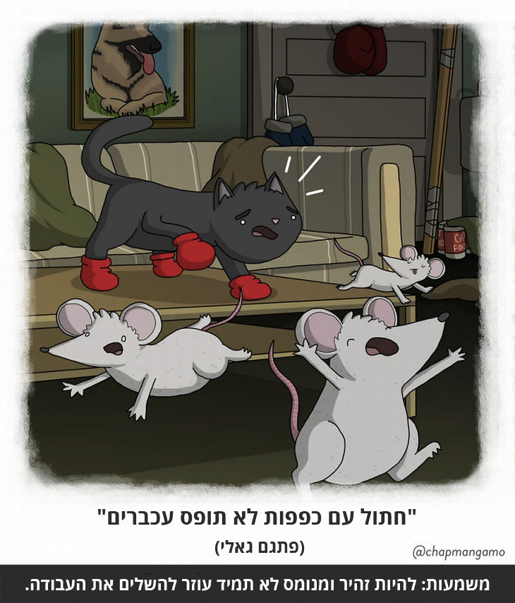 """""""חתול עם כפפות לא תופס עכברים"""" (פתגם גאלי) משמעות: להיות זהיר ומנומס לא תמיד עוזר להשלים את העבודה."""