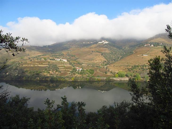 אתרי טיולים מומלצים בצפון פורטוגל: עמק דורו