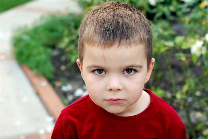 ילד מביט ישירות למצלמה