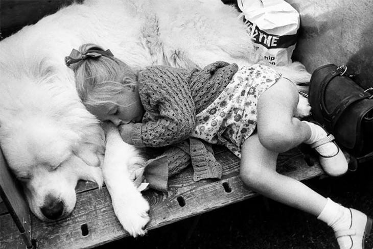 ילדים ישנים על כלבים