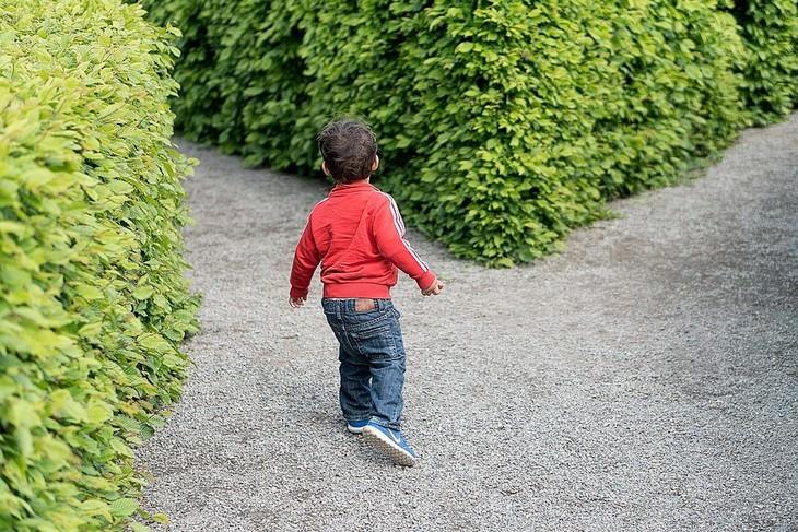 ילד עומד מול שני שבילים