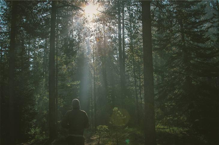 איש ביער