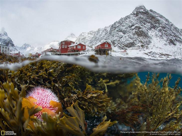 מבט תת ימי על לופוטן בחורף