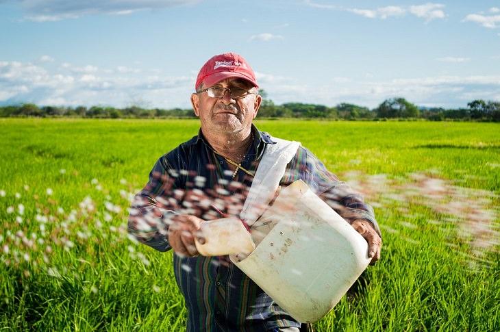 גבר מבוגר עובד בשדה