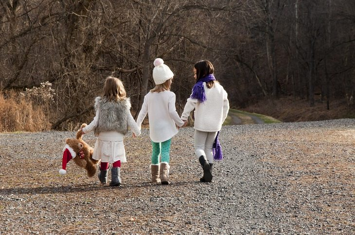 3 ילדות צועדות ליד חורשת עצים