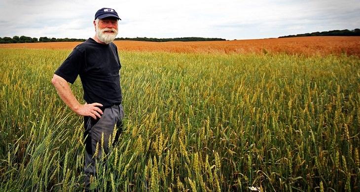 חקלאי בשדה