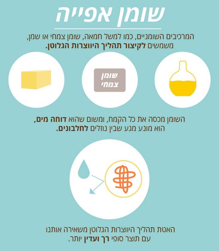 מידע מדעי שמספיר את תהליך האפייה והבישול