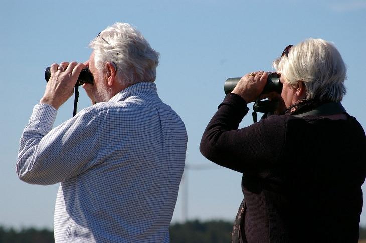 זוג מבוגר מביט דרך משקפות