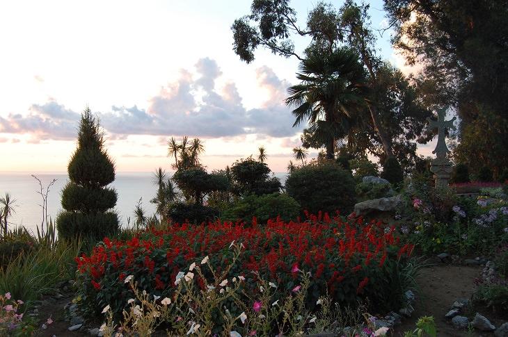 הגן הבוטני של בטומי