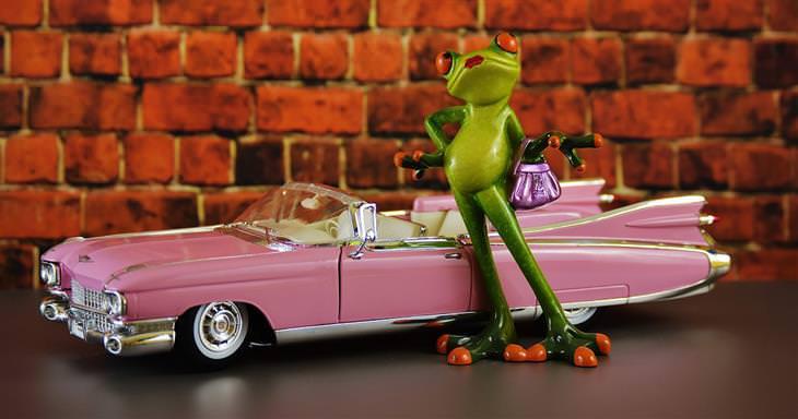 בובת צפרדע לצד מכונית ספורט