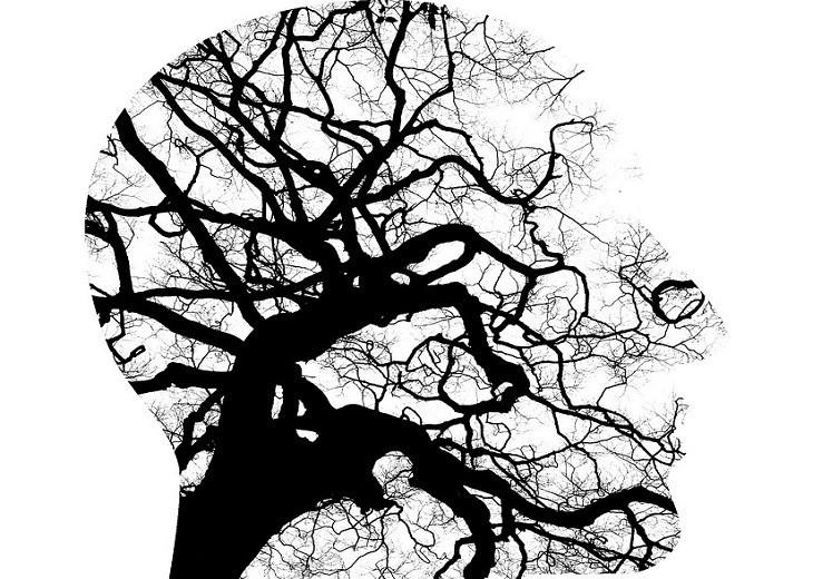 איור פרופיל של ראש עם ענפים בתוכו