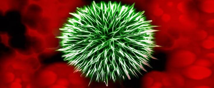 איור של חיידק ליד תאי דם