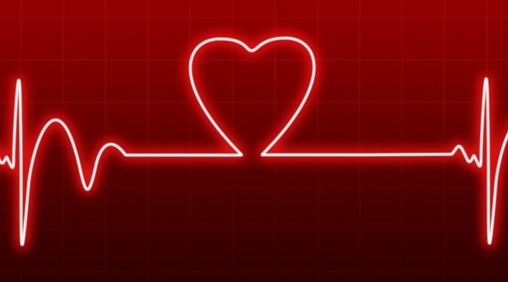איור של אקו לב