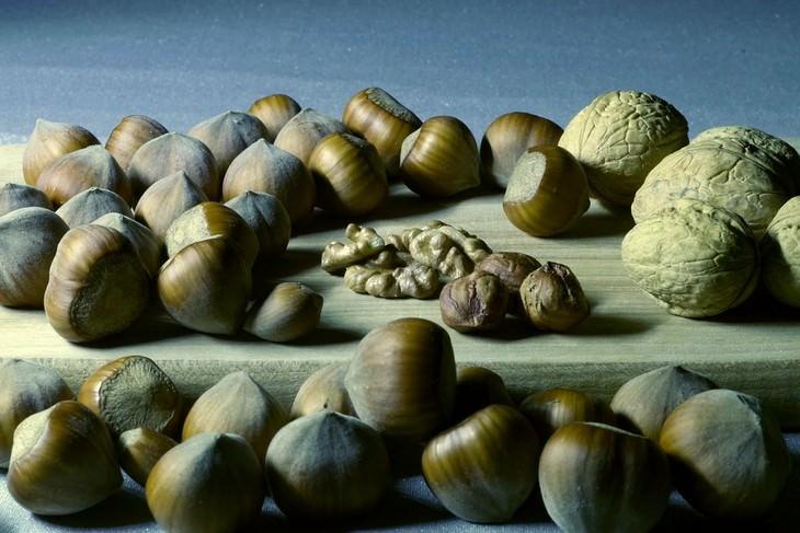 סוגים שונים של אגוזים