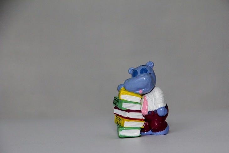 כללי נימוס חברתיים: בובה של היפופוטם שעונה על ערימת ספרים