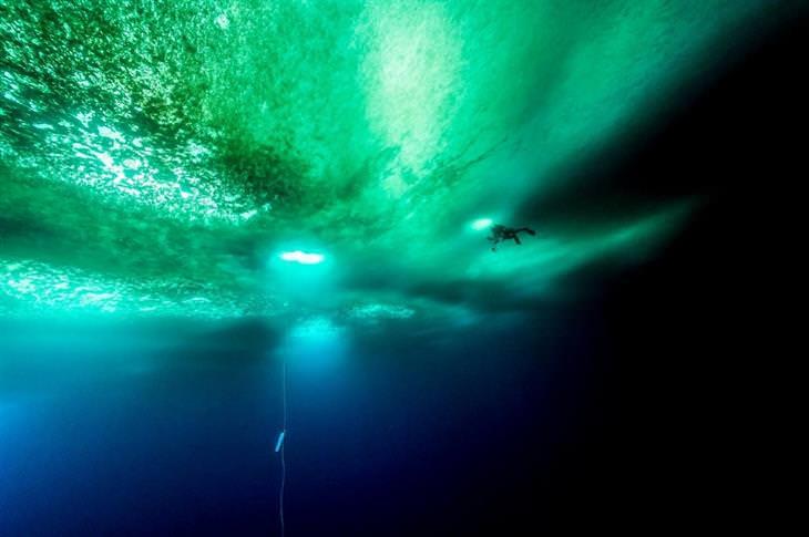 תמונות שצולמו במים מתחת ליבשת אנטארקטיקה: צוללן מתחת לקרח