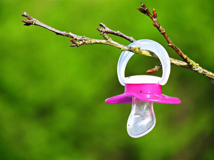 מצבים שמסכנים ילדים במגע עם חיידקים: מוצץ תלוי על ענף של עץ