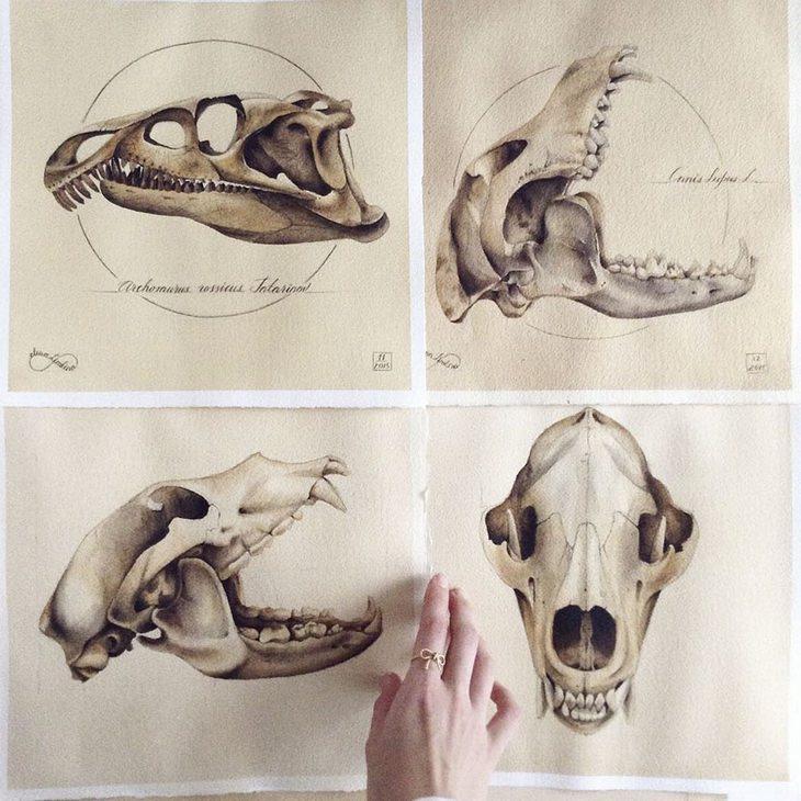 יצירות של האמנית אלנה לימקינה: גולגולות של חיות