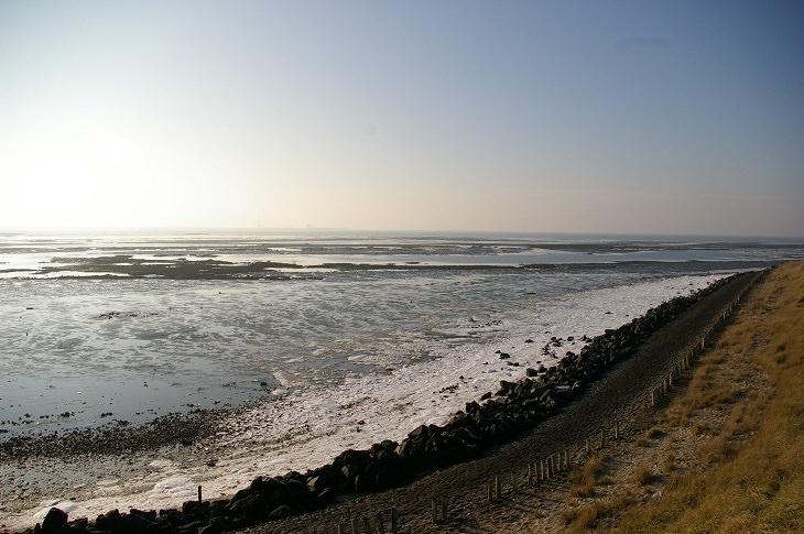 שמורות טבע ופארקים לאומיים בהולנד: הפארק הלאומי אוסטרסכלדה