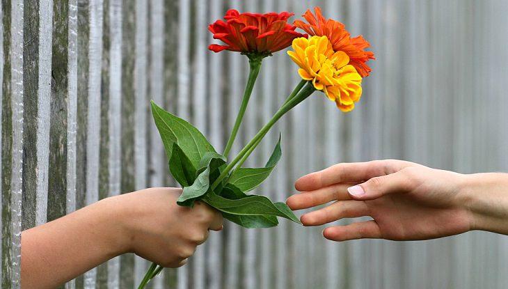 איך לחשוף אופי של אדם? נתינת פרחים