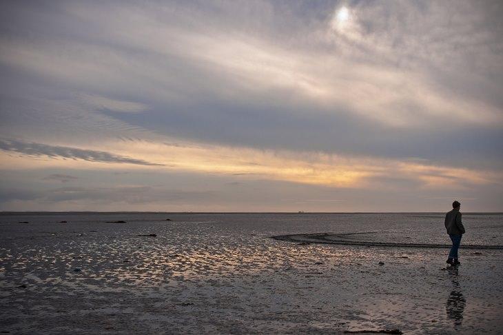 שמורות טבע ופארקים לאומיים בהולנד: הפארק הלאומי סחירמוניקוג