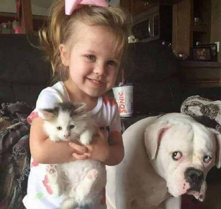 חיות חמודות שיעשו לכם את היום: ילדה מחזיקה חתלתול בידה, ולידה כלב עם מבט עצוב