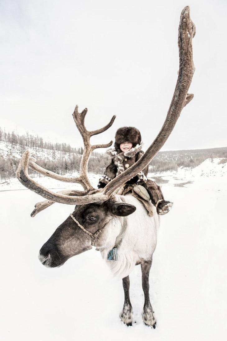 תרבויות מיוחדות בסיביר: ילד אוונקי יושב על אייל הצפון
