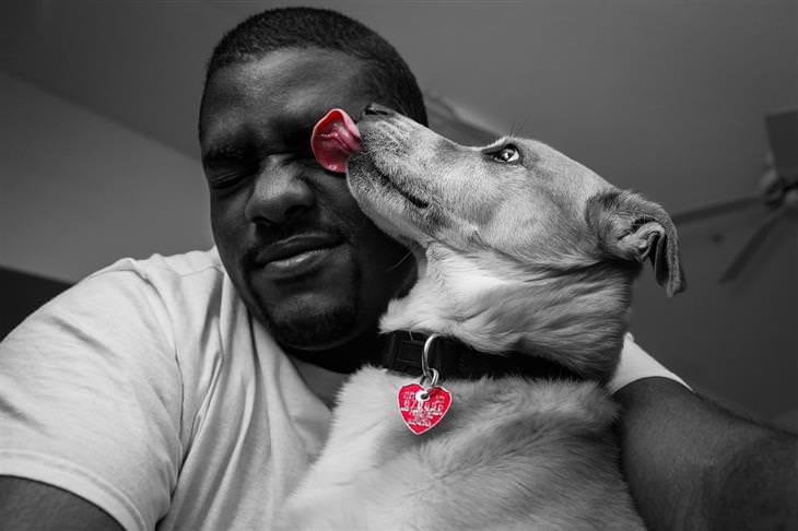 סימנים שהכלב שלכם רואה בכם כמנהיגי הלהקה: כלב מלקק פנים של אדם