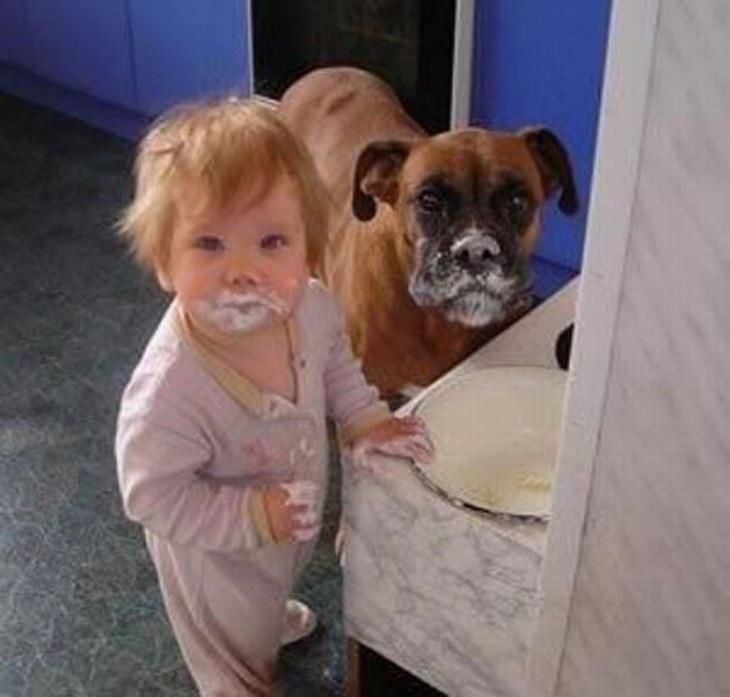 ילדים וחיות מחמד: ילד קטן וכלב עם לכלוך מעוגה שאכלו על פניהם