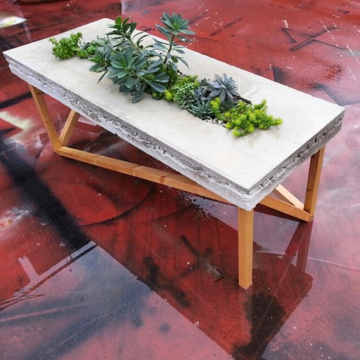 מוצרים בעיצובים מיוחדים: שולחן בטון עם צמחים שצומחים במרכזו
