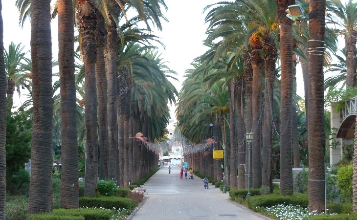 """אירועי ט""""ו בשבט 2018: גן העיר בראשון לציון"""