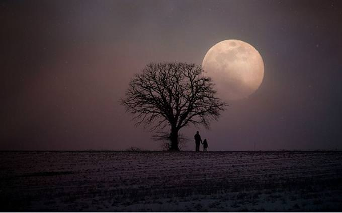 """חידון אישים בתנ""""ך: שדה בליל ירח מלא"""