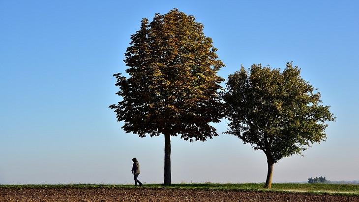 איך מזהים דיכאון בתפקוד גבוה: גבר שפוף מתרחק משני עצים