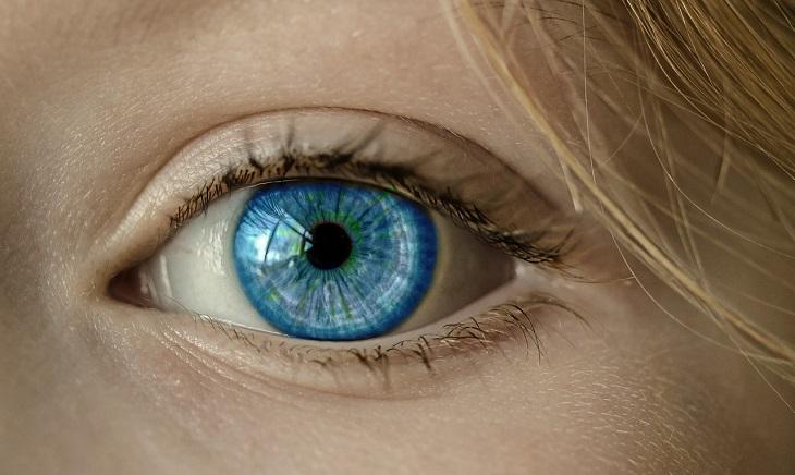 פריצות הדרך המדעיות של 2018: עין אנושית