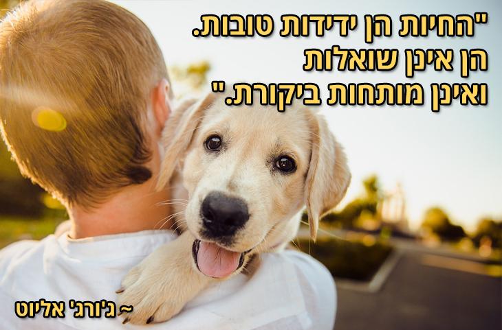 """ציטוטים על חיות מחמד והאדם: """"החיות הן ידידות טובות. הן אינן שואלות, ואינן מותחות ביקורת."""" ~ ג'ורג' אליוט"""