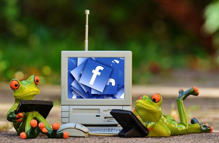 דרכים בהם פייסבוק שינתה לרעה את חיינו: בובות של צפרדעים מתבוננות במסכים עליהם מופיעה הרשת החברתית