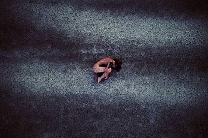 """תמונות זוכות מתחרות צילומי רחפן: """"הלידה מחדש"""", אנדרה מרונגי"""