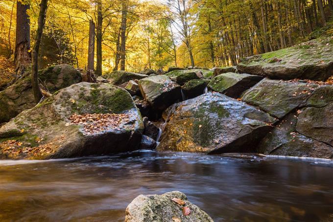 עד כמה החיים שלך זורמים: אבנים ונהר